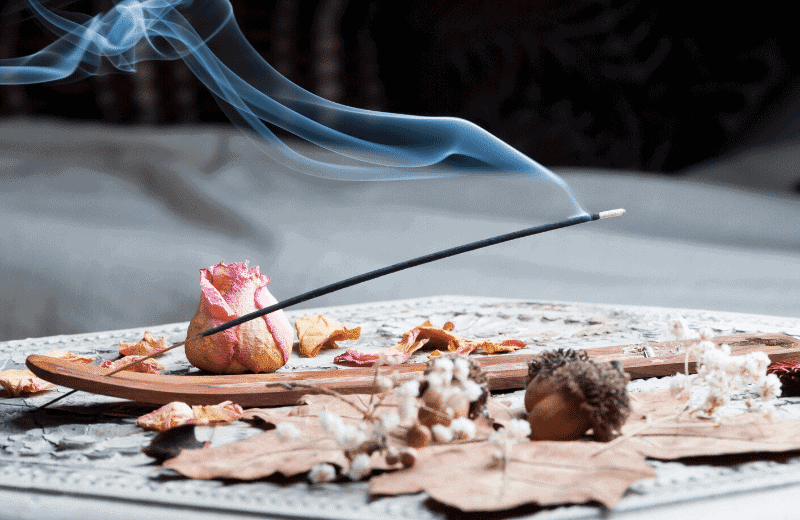 Is Burning Incense Bad for Cats?