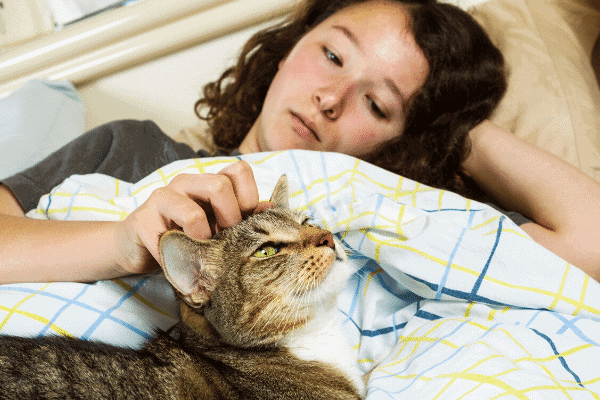 how to get your cat sleep with you