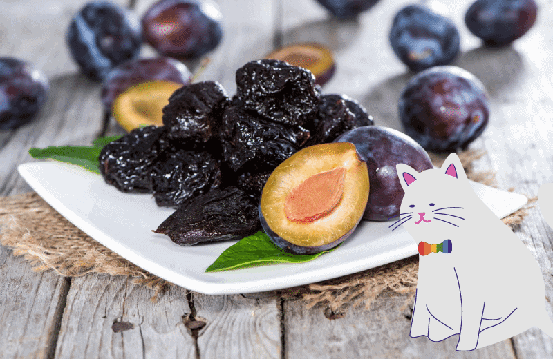 can cats eat plums