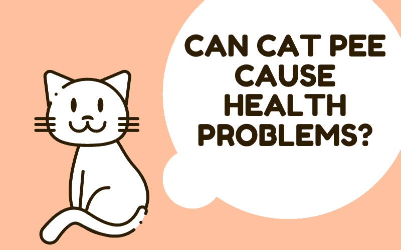 can cat pee cause health problems?